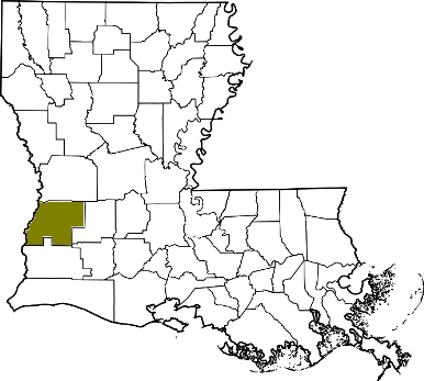 louisiana fire, louisiana firefighters, la firefighters, la fire, louisiana fire department, beauregard parish, beauregard parish ems, beauregard parish fire apparatus, beauregard parish fire departments