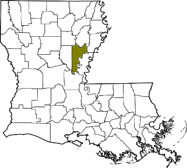 louisiana fire, louisiana firefighters, la firefighters, la fire, louisiana fire department, catahoula parish, catahoula parish ems, catahoula parish fire apparatus, catahoula parish fire departments